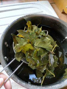 tamis pour récupérer les feuilles de lierre